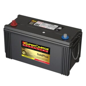 Supercharge Batteries Gold Plus MFN100