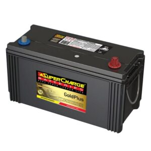 Supercharge Batteries Gold Plus MFN100L
